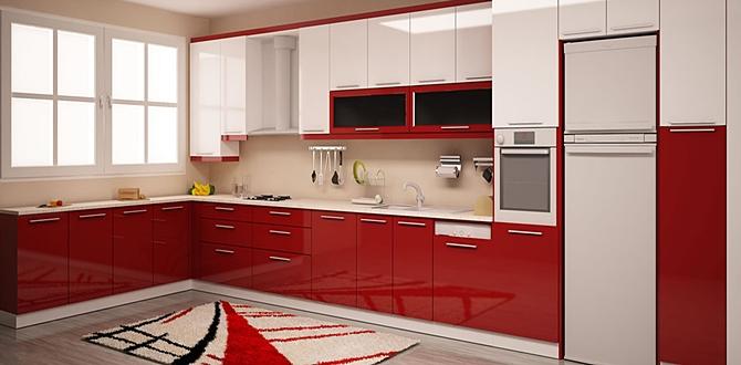Mutfak tadilatı yaptırmak istiyorum