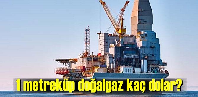 1 metreküp doğalgaz fiyatı