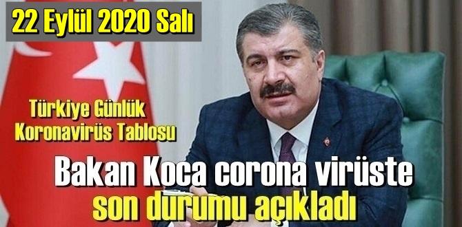 Türkiye Koronavirüs verisi