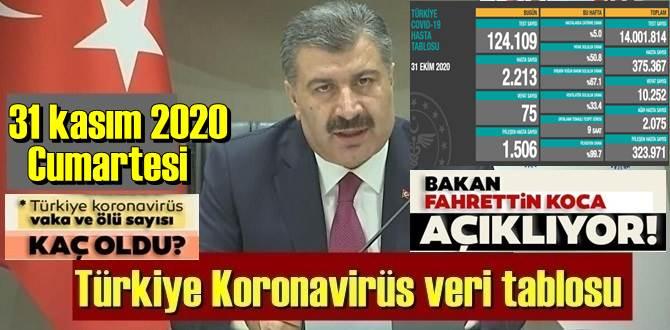 31 kasım 2020 Cumartesi/ Türkiye Koronavirüs veri tablosu haberimizde!