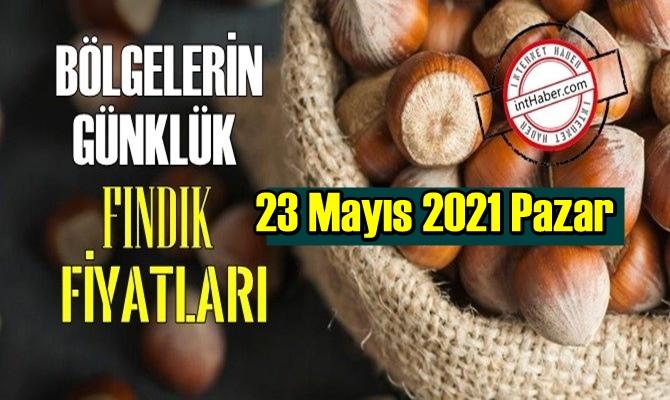 23 Mayıs 2021 Pazar Türkiye fındık fiyatları