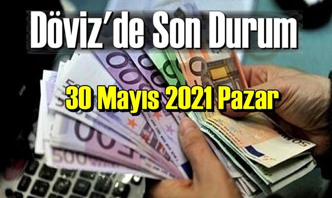 30 Mayıs 2021 Pazar Ekonomi'de Döviz piyasası