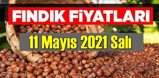 11 Mayıs 2021 Salı Türkiye günlük Fındık fiyatları