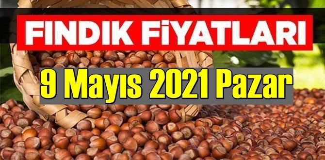 9 Mayıs 2021 Pazar Türkiye günlük Fındık fiyatları