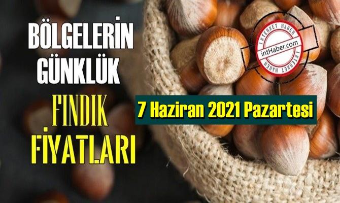 7 Haziran 2021 Pazartesi Türkiye günlük Fındık fiyatları